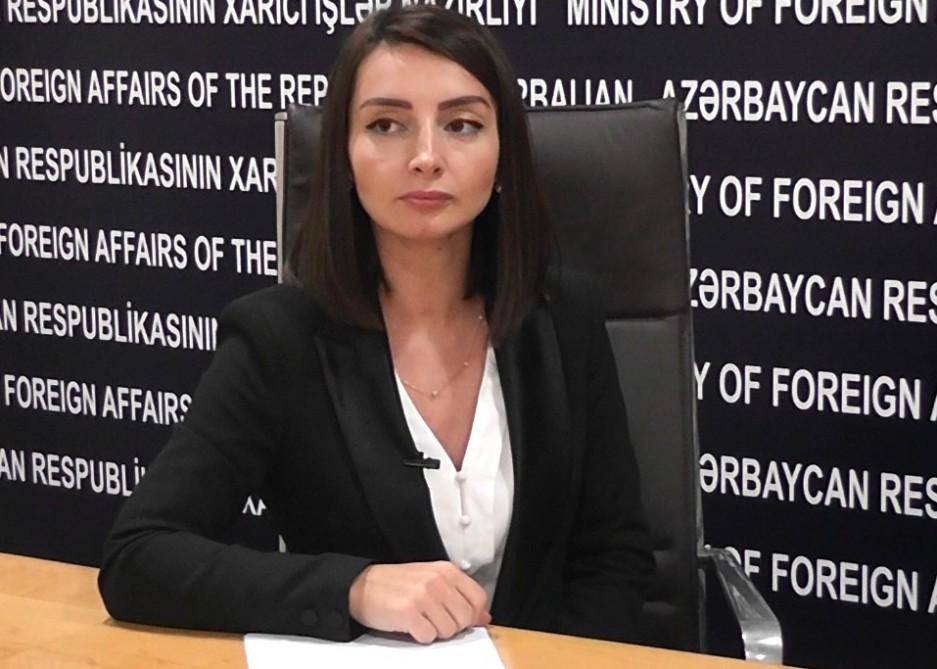 """Leyla Abdullayeva: """"Azərbaycan Gürcüstanla dövlət sərhədinin..."""" - MÜSAHİBƏ"""