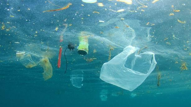 Plastik tullantıların miqdarı balıq sayından daha çox olacaq