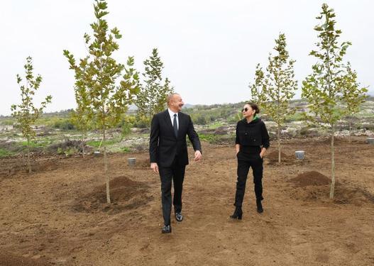 Prezident və birinci xanım Füzulidə yaradılacaq Mərkəzi Şəhər Parkında ağac əkiblər